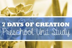 7 Days of Creation Preschool Unit Study